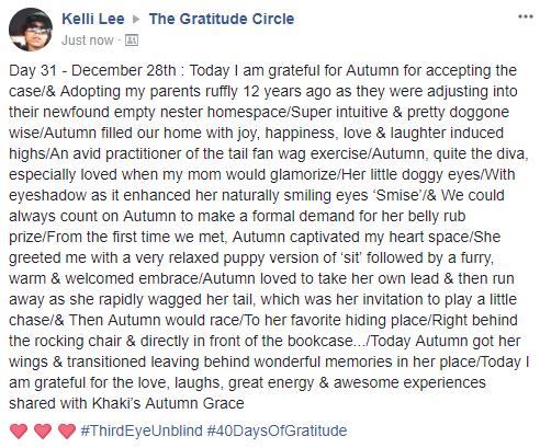 Gratitude 2 Day 31 2017-12-28