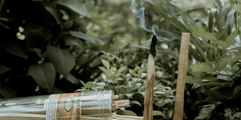 palo santo is a natural insect repellent
