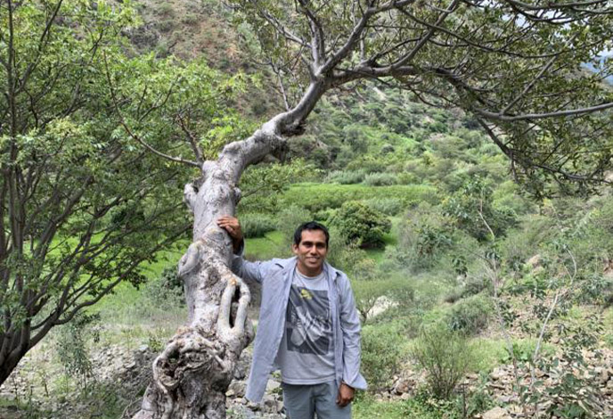 man standing by a palo santo tree