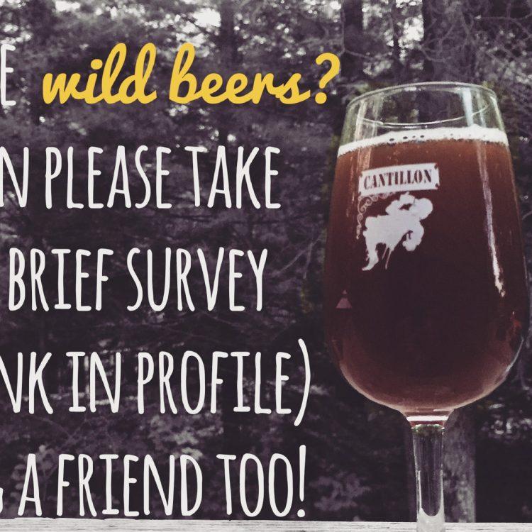 Wild Beer Survey