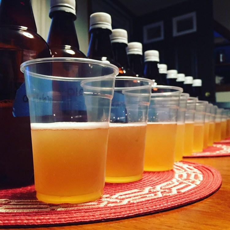 Foraged Yeast Pilot Batch Tasting