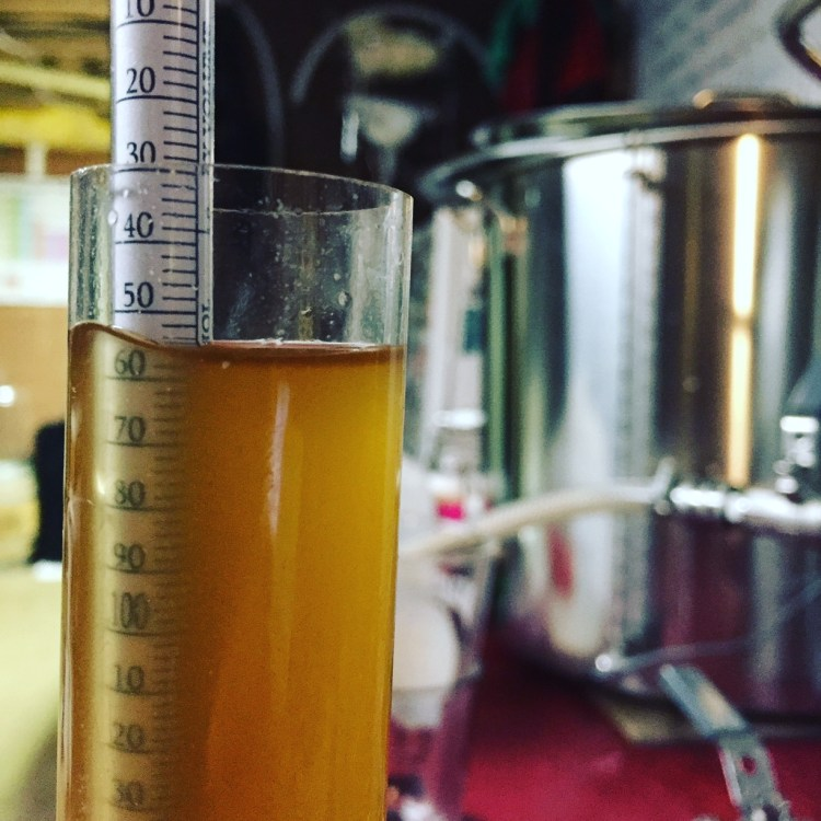 Insider's View to the Quintessential Brew Day