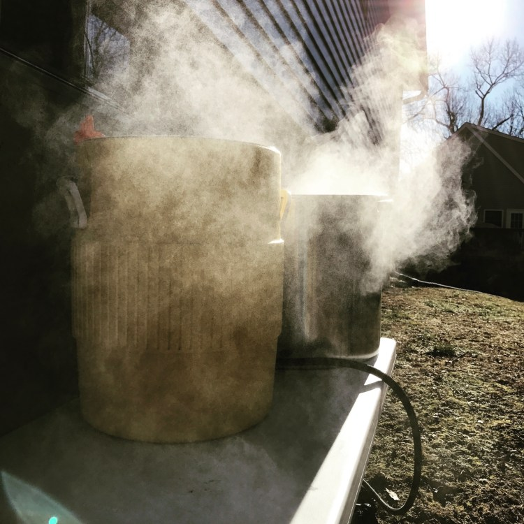 The Great Homebrew Coolship Experiment
