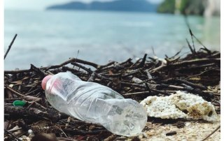 A Plastic Bottle Polluting The Shore Near A Body Of Water