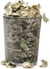 money-trash