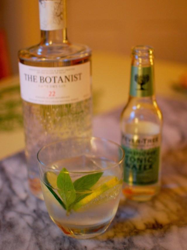 Gin-tonic-6