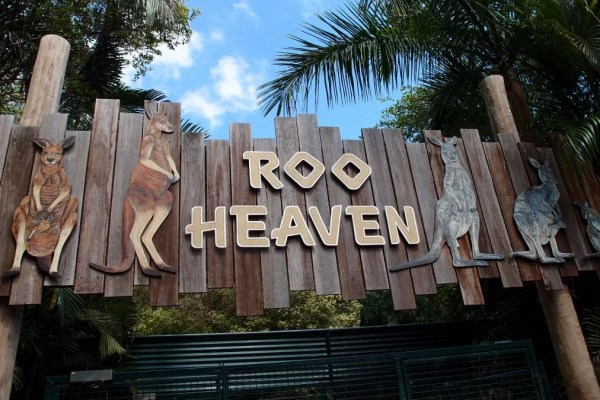 Roo Heaven sign australia zoo