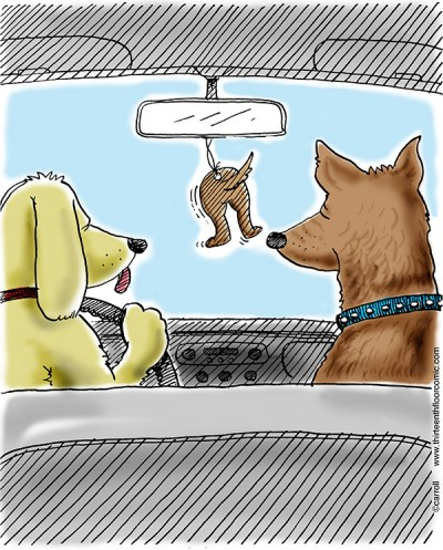 dog-air-freshener-cartoon