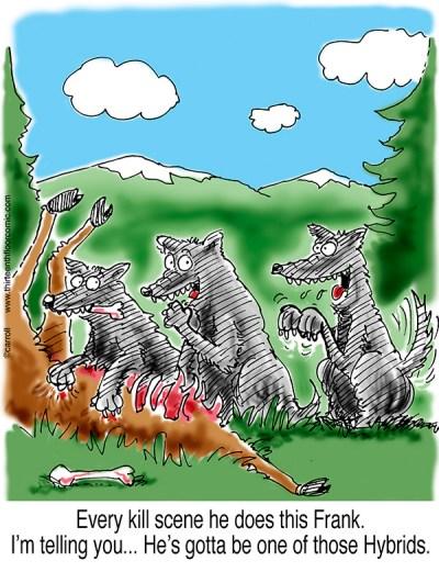 Wolf Hybrid Gifts