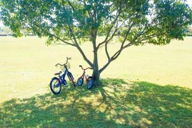 自転車に乗りたい子供の練習で気をつけたい事と練習の流れ
