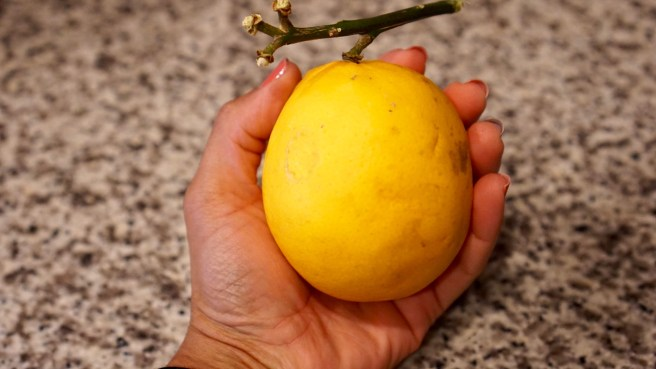 Huge lemon
