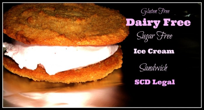 Dairy Free Ice Cream Sandwich Recipe