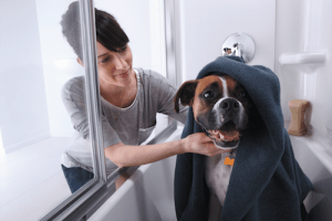 Dog Groomer Tips for Bathing a Puppy