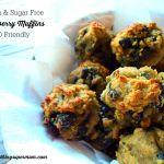 SCD Blueberry Muffins (Gluten & Sugar Free)
