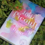 Reading Resolution May: A Spark of Light by Jodi Picoult
