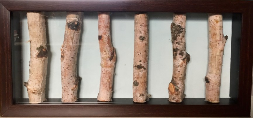 """Birch #1 (7""""x 15""""x 1.75"""") $45"""