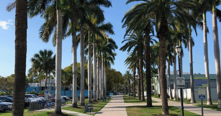 Why I Moved to Miami: Channeling that Sunshine State of Mind