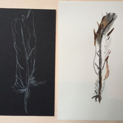 Childrens feather observational drawing (2)