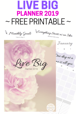 Live Big Planner 2018_ This Blended Home of Mine - Free Printable, Goals 2019