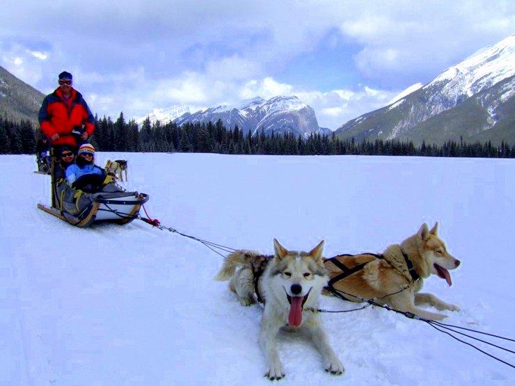 husky sled canada