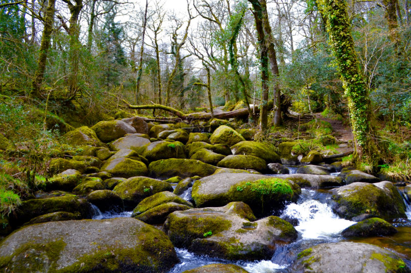becky falls Dartmoor Devon UK