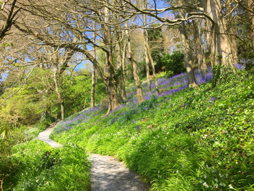 coleton fishacre national trust Devon UK Kingswear Dartmouth: coleton fishacre national trust Devon: family-friendly things to do near Kingswear