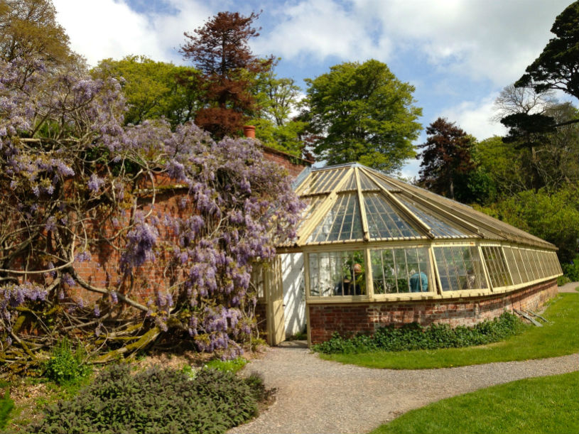 greenway greenhouse national trust devon agatha christie: Family-friendly things to do near Kingswear