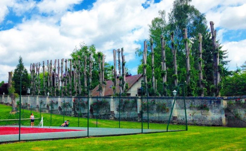 11 reasons to do eurocamp holidays with kids