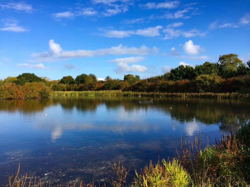 Ferry Meadows Ferry, nene valley country park, Ferry meadows train, nene valley country park, Top 10 things to do in Stamford with kids