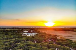 A mini guide to camping at Park Albatros, Tuscany, Italy