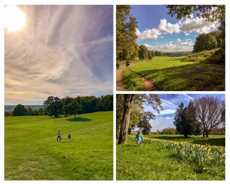 Ashton Court Estate parkland, Bristol