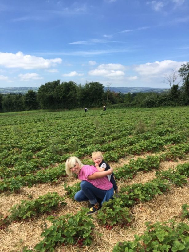 where to go strawberry picking near Bristol