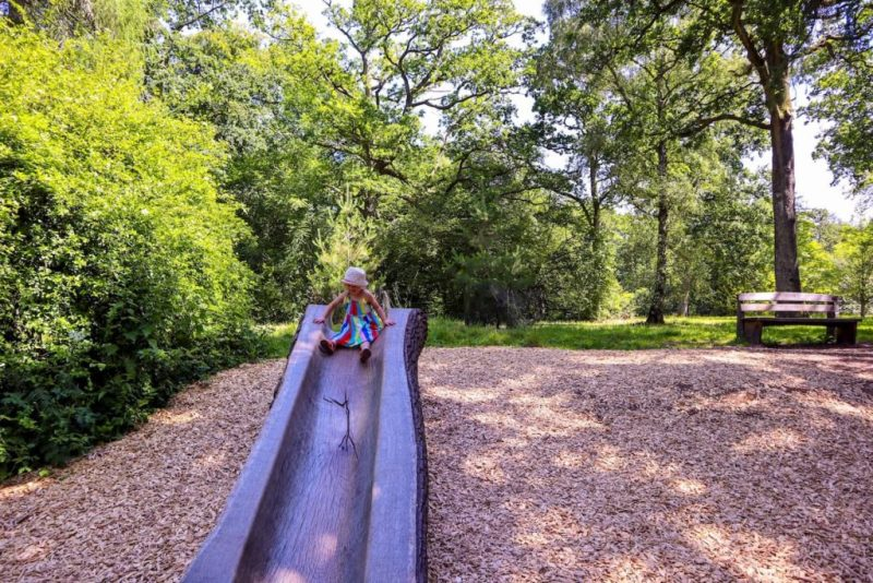 Natural wood slide at Westonbirt Arboretum