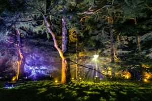 Westonbirt Arboretum Enchanted Christmas festival of lights