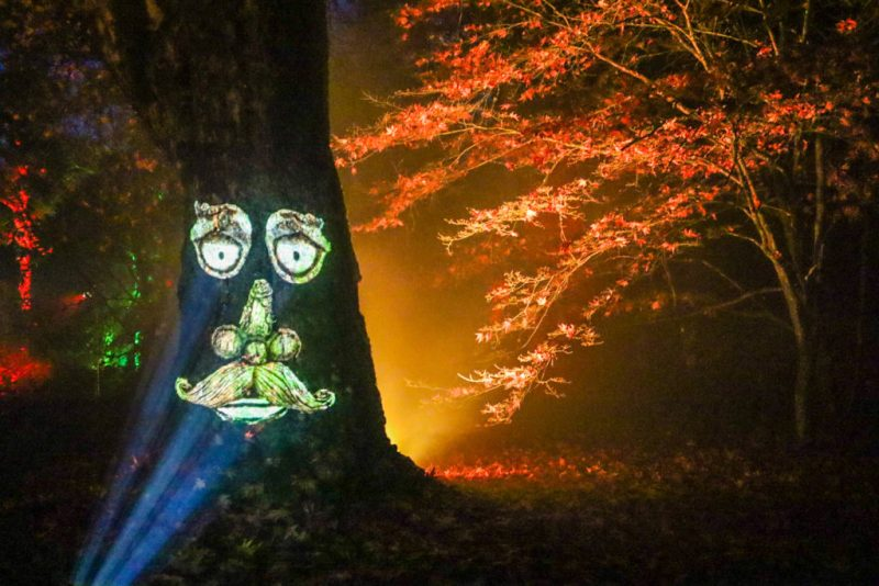 Westonbirt Arboretum Enchanted Christmas light event - talking tree