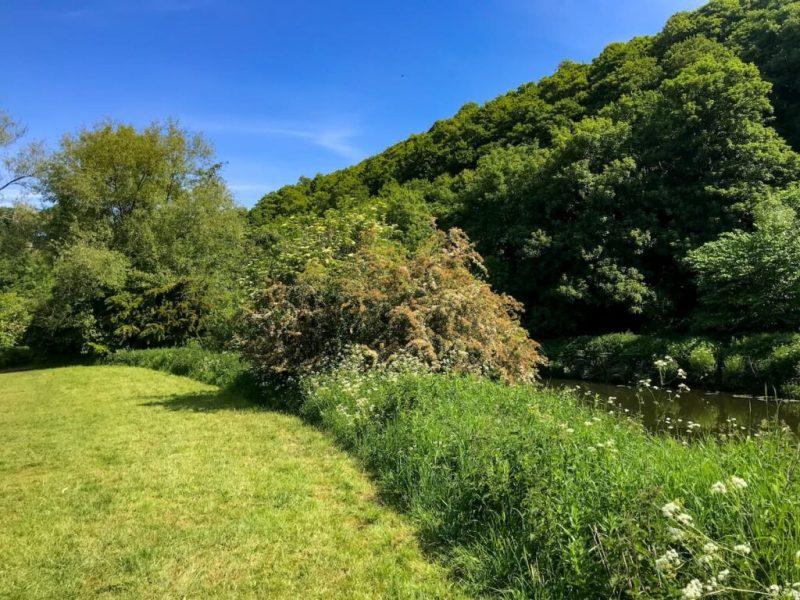 Eastwood farm nature reserve, Brislington, Bristol