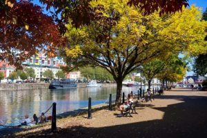 Baltic Wharf - autumn walks in Bristol