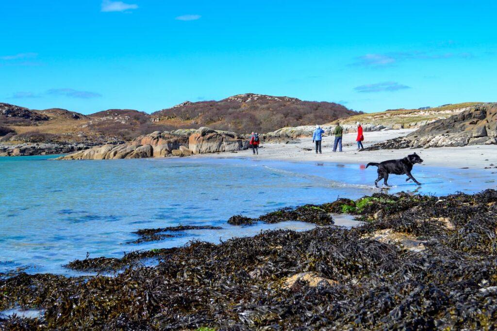 Bagh a Chnoic Mhaoileanaich beach, Isle of Mull