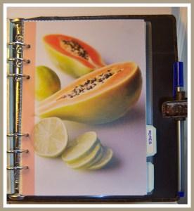 Papaya Notes -PHOTO  5a.jpg