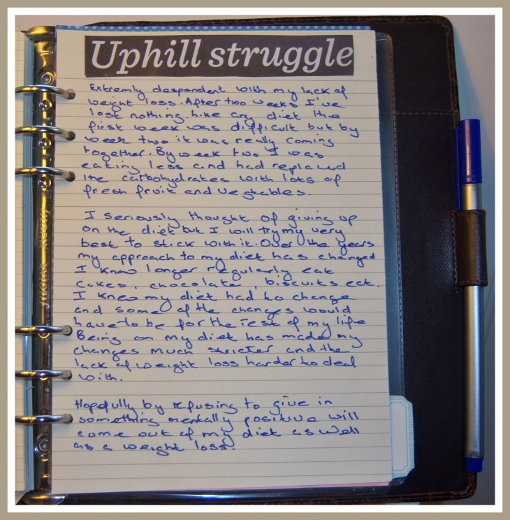 1 An Uphill Stuggle.jpg