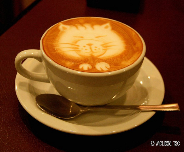 Cat-Coffee-Art__01