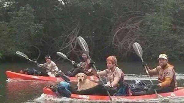 adventure-dog-4