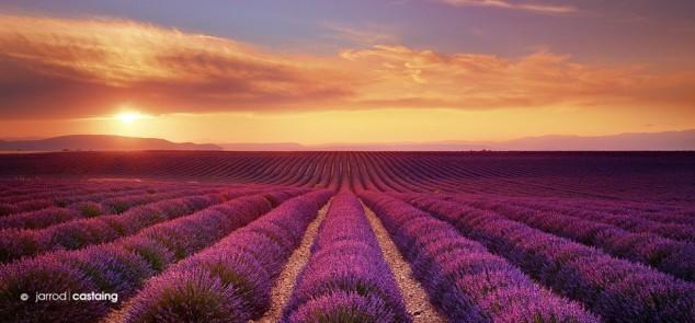 tss_1374389302_Sunset-Over-Lavender-Fields-Valensole-Provence-France.-Photo-by-Jarrod-Castaing.-634x295
