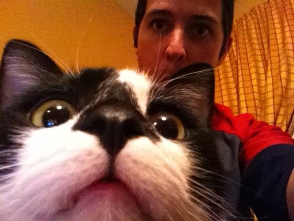 giant-cat-photobombs-dude-29787-1310049008-2