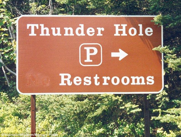 2DDDC35700000578-3293332-Some_of_the_most_amusing_signs_seem_to_revolve_around_toilets_in-a-12_1446037972293