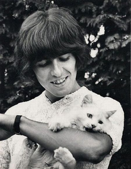 celebrities_and_cats_08