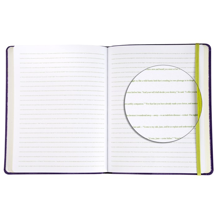 btjmyo-novel-journals-myo-detail2-1200