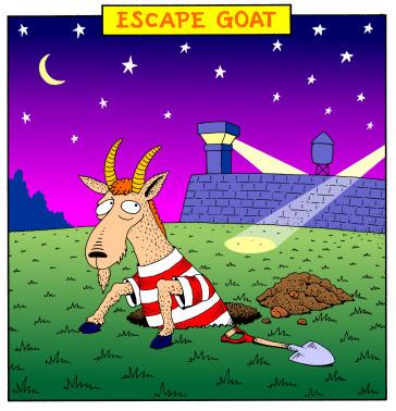 escapegoat_d9900991cb2e2a3a6c1474242a22dca6