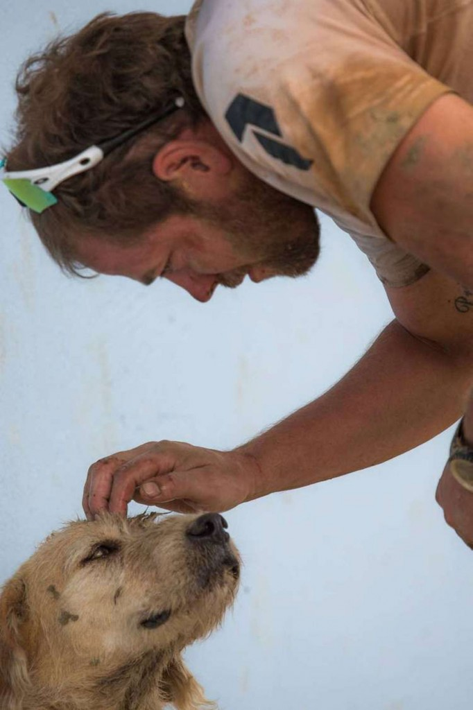 dog-arthur-joins-adventure-race-12-682x1024