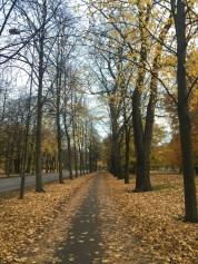 City Park in Gothenburg, Sweden